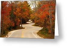 Curvy Fall Greeting Card by Adam Romanowicz