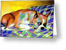 Cute Boxer Dog portrait painting Greeting Card by Svetlana Novikova