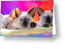 Cute Siamese Kittens Cats  Greeting Card by Svetlana Novikova