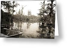 Cypress Swamp Greeting Card by Scott Pellegrin