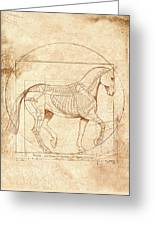 da Vinci Horse in Piaffe Greeting Card by Catherine Twomey