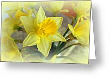 Daffodil Greeting Card by Bishopston Fine Art
