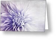 Dahlia Sun Greeting Card by Priska Wettstein