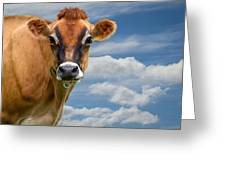 Dairy Cow  Bessy Greeting Card by Bob Orsillo