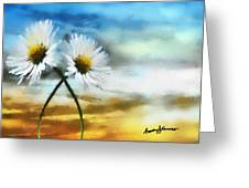 Daisies In Love Greeting Card by Anthony Caruso