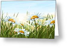 Daisies Greeting Card by Veronica Minozzi