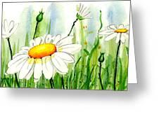 Daisy Field Greeting Card by Annie Troe
