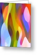 Dappled Light 4 Greeting Card by Amy Vangsgard