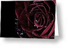 Dark Rose 2 Greeting Card by Ann-Charlotte Fjaerevik