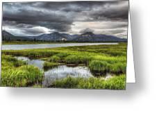 Darkening Alaska Lake Greeting Card by Ron Day