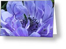 Daughter Of The Wind Greeting Card by Geri Glavis
