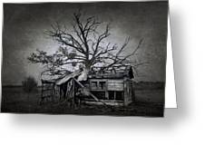 Dead Place Greeting Card by Svetlana Sewell