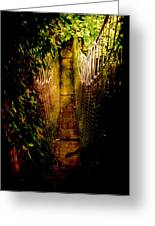 Deadly Path Greeting Card by Loriental Photography