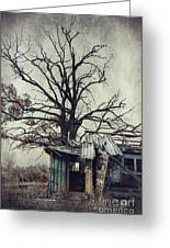 Decay Barn Greeting Card by Svetlana Sewell