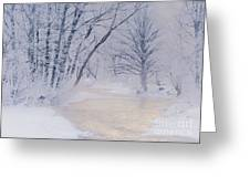 December Riverscape Greeting Card by Alan L Graham
