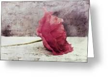 Decor Poppy Horizontal Greeting Card by Priska Wettstein