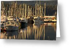 Deep Bay Greeting Card by Randy Hall