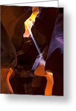 Deep In Antelope Greeting Card by Chad Dutson