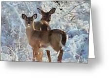 Deer In The Snow Greeting Card by Elizabeth Coats