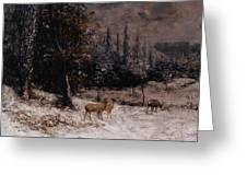 Deer In The Snow Greeting Card by Gustave  Courbet
