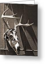 Deer Skull In Sepia Greeting Card by Brooke Ryan