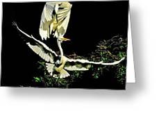 Defending The Nest Greeting Card by Stuart Harrison