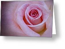 Delicately Pink Greeting Card by Ivelina  Aasen