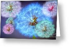 Delightful Dandelions Greeting Card by Donald Davis