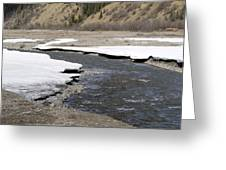 Denali Area River Greeting Card by Tara Lynn