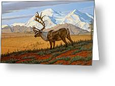 Denali Greeting Card by Paul Krapf