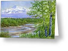 Denali Viewpoint Greeting Card by Sharon Freeman