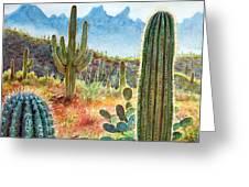 Desert Beauty Greeting Card by Frank Robert Dixon