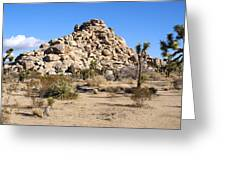 Desert Mound Greeting Card by Barbara Snyder