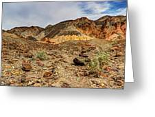 Desert Zen Greeting Card by Heidi Smith