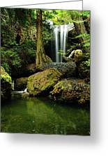 Devil Creek Falls  Greeting Card by Jeff Swan