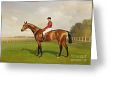 Diamond Jubilee Winner Of The 1900 Derby Greeting Card by Emil Adam