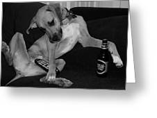 Diesel In Black And White Greeting Card by Rob Hans