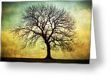 Digital Art Tree Silhouette Greeting Card by Natalie Kinnear