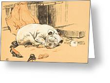 Disappointment At Not Finding The Chocolates Greeting Card by Cecil Charles Windsor Aldin