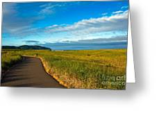 Discovery Trail Greeting Card by Robert Bales