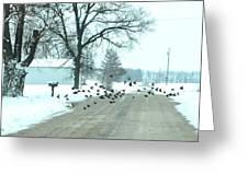 Disturbing The Flock Greeting Card by Julie Dant