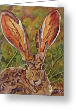 Do These Ears Make Me Look Fat Greeting Card by Robin Hegemier