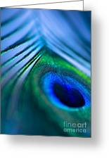 Do You Dream In Colour? Greeting Card by Jan Bickerton
