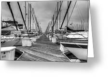 Dock Life Greeting Card by Heidi Smith