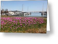 Docks at Sausalito California 5D22695 Greeting Card by Wingsdomain Art and Photography