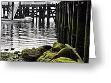 Dockside 2 Greeting Card by JC Findley