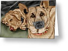Dogs Greeting Card by Karen Sheltrown