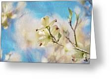Dogwood Against Blue Sky Greeting Card by Lois Bryan