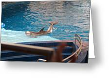Dolphin Show - National Aquarium In Baltimore Md - 1212104 Greeting Card by DC Photographer