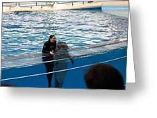 Dolphin Show - National Aquarium In Baltimore Md - 1212229 Greeting Card by DC Photographer